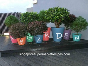 Serangoon My Village Roof Top Garden