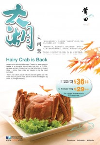 putien hairy crab promotions