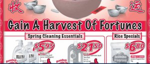 Shop n save chinese new year supermarket promotions